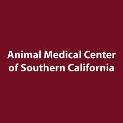 animal-medical-center