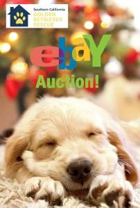 Ebay Auction SCGRR logo