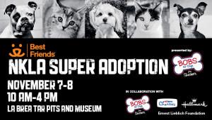 5008-NKLA Super Adoption NKLA event page