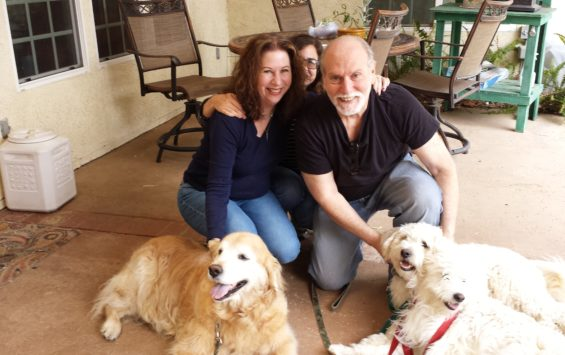 doodle and dandy adopted