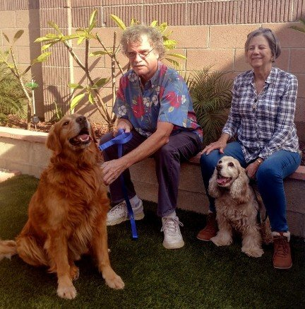Dogs Southern California Golden Retriever Rescue Page 7